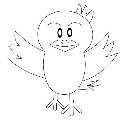 bird-newone