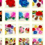薔薇と折り紙の日々